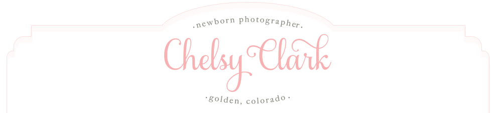 Chelsy Clark | Denver Newborn Photographer | Golden Colorado logo